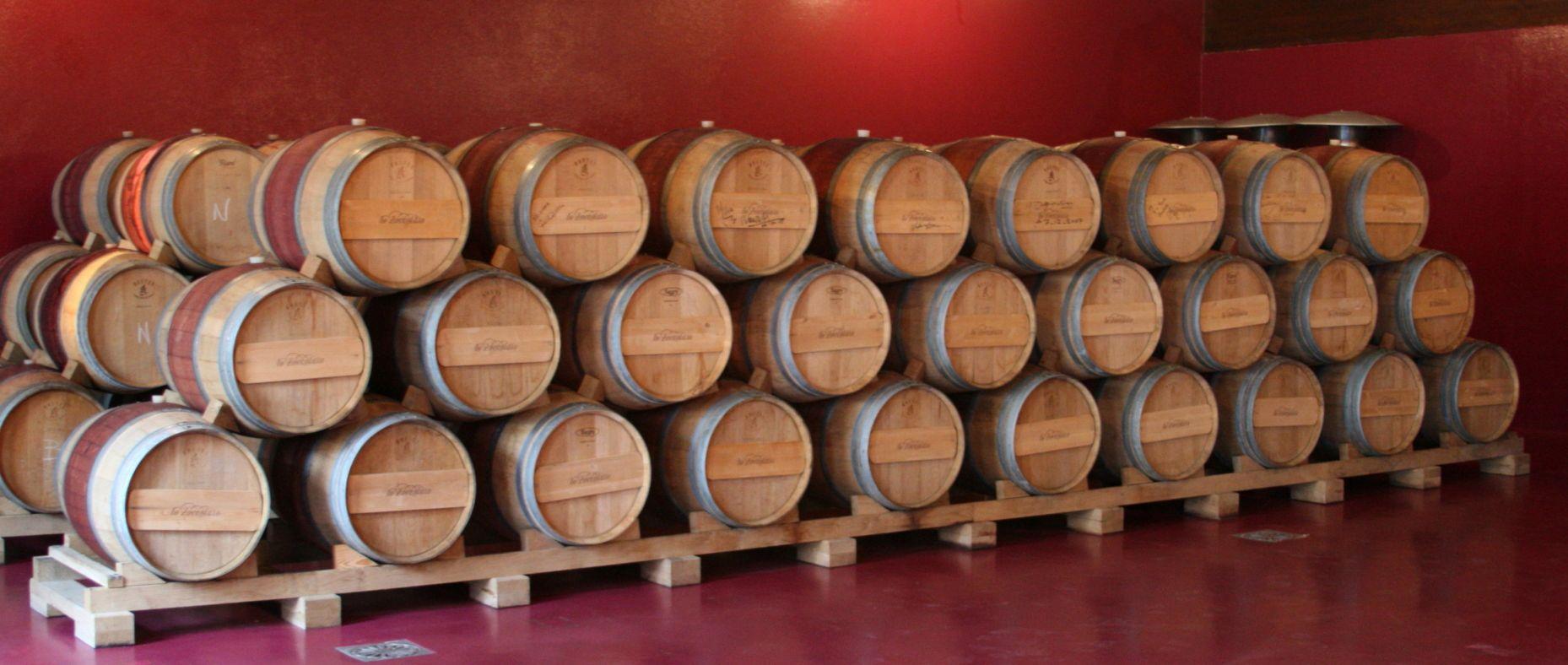 The Cellar, Cascina lo Zoccolaio, Piemont