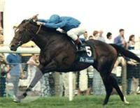 Swain(1992)Nashwan- Love Smitten By Key To The Mint. 5x5 To Nearco. 22 Starts 10 Wins 4 Seconds 6 Thirds. $3,797,566. Won King George VI And Queen Elizabeth Stakes (G1) In 1997 And 1998. Champion European Older Horse In 1998.