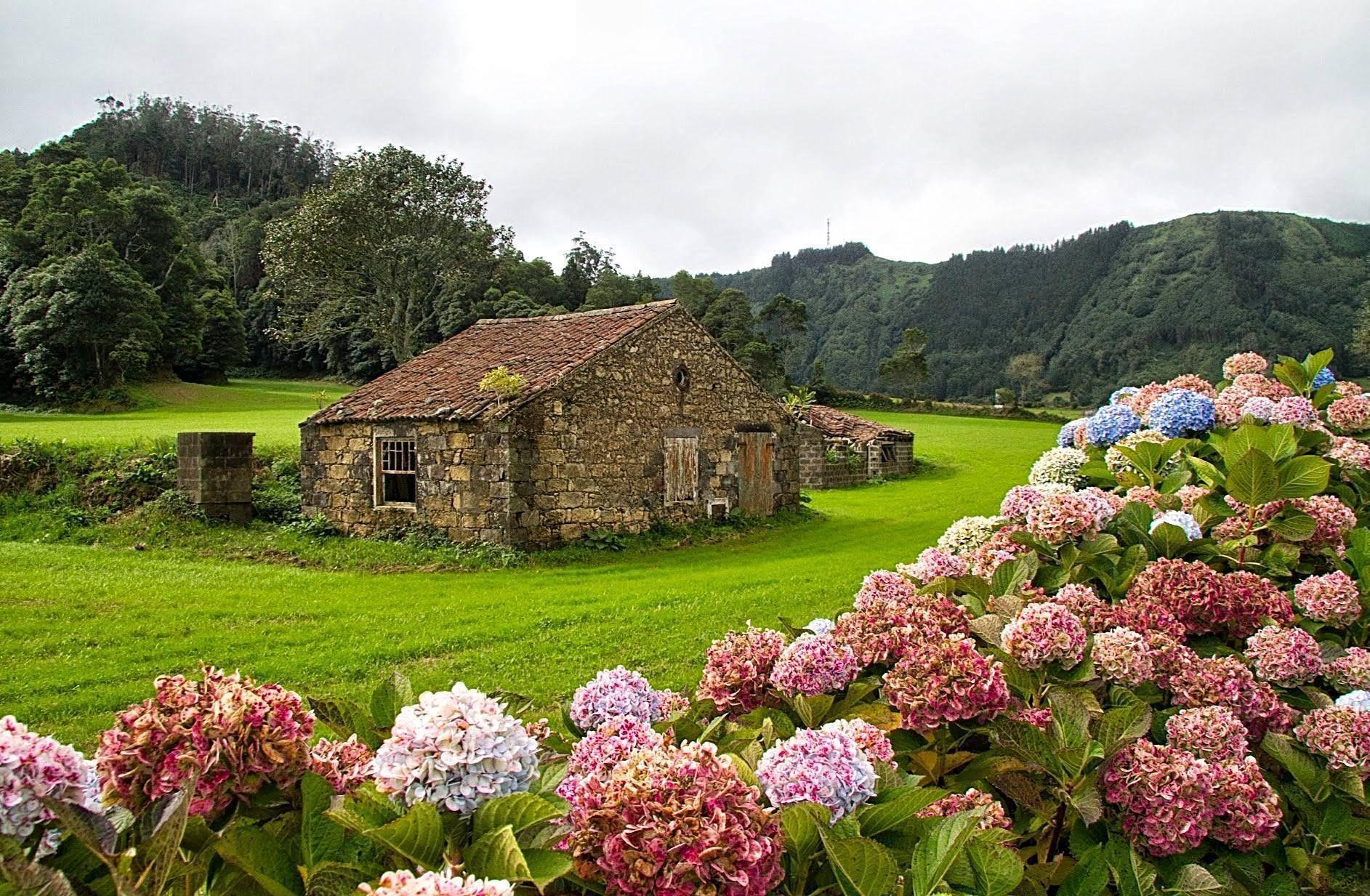 Foto Rick Wilhelmsen Ilha Das Flores Açores Açores Ilhas