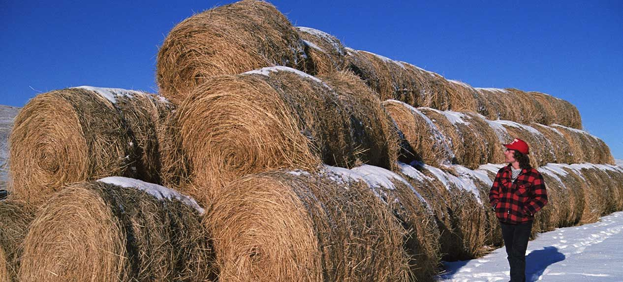 cropinsurance Crop insurance, American economy, America