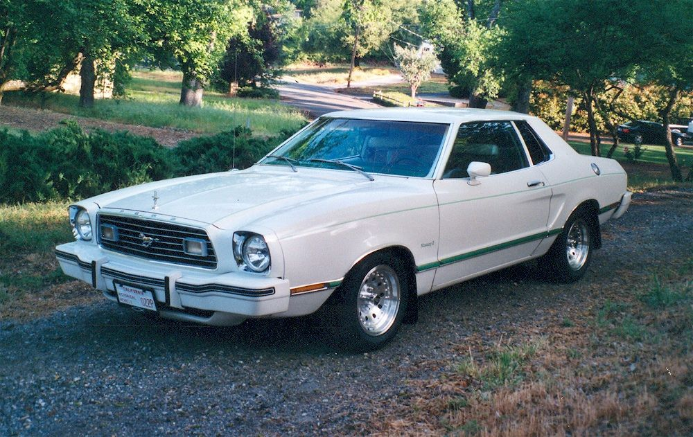 Yesteryear 77 Mustang Cobra II white stripes decal