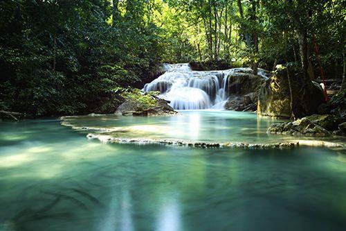 tropical-rainforest-river.jpg (500×333) | MW-Heartlands - Nammu ...