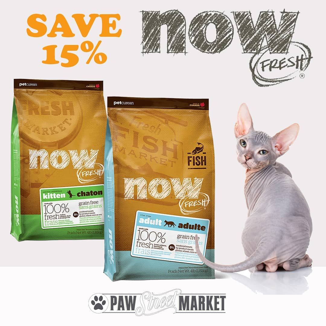 Save 15 On Now Fresh Cat Food They Pack Now Fresh Grain Free Cat Food Full Of Nutritious Ingredients Like 100 Fresh Cat Food Cat Food Grain Free Cat Food