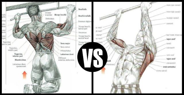 Chin Ups Vs Pull Ups - Which Exercise Gives You A Stronger Back