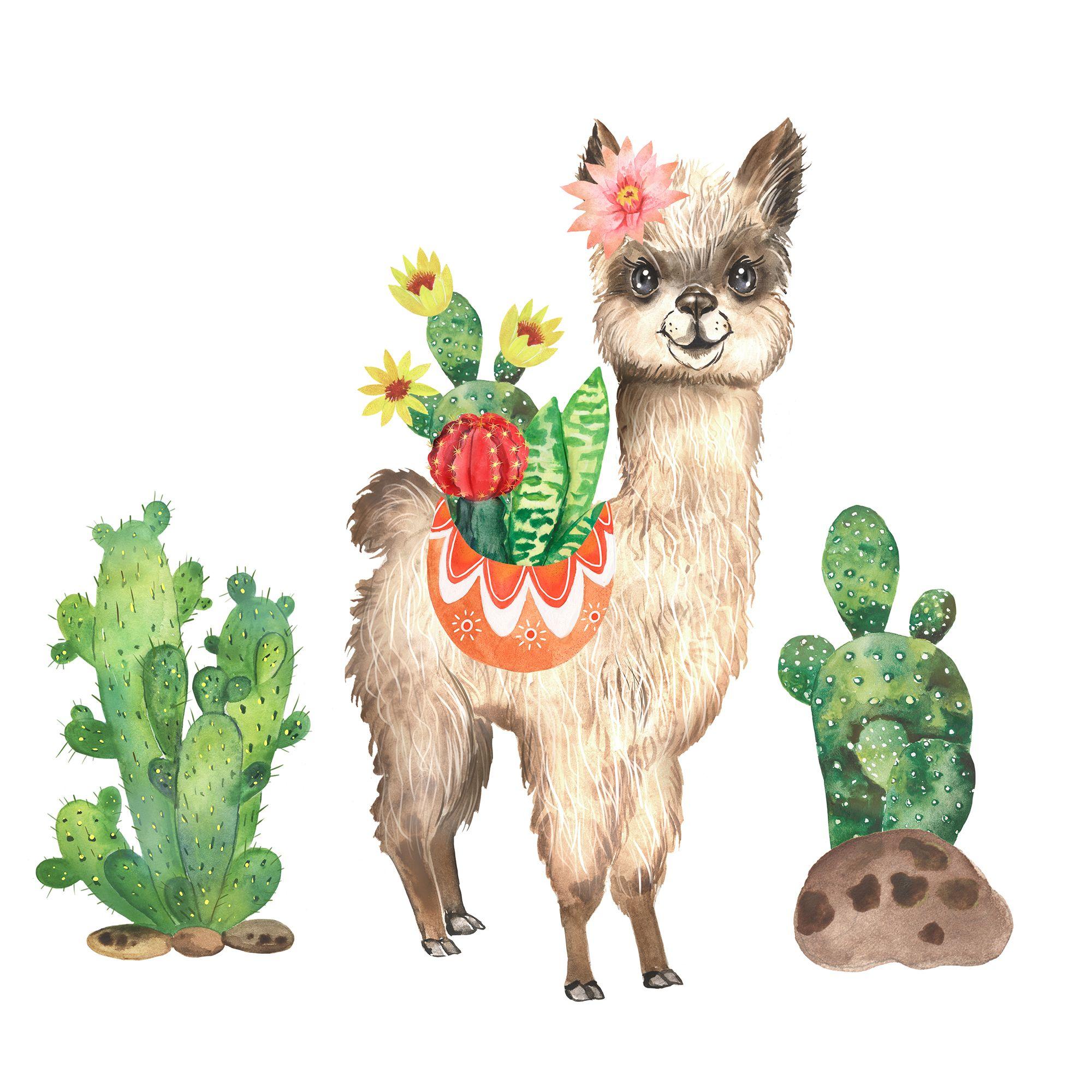 Llama Clipart Watercolor Llama Alpaca Cute Animal Cactus Etsy Llama Clipart Cute Animals Animals