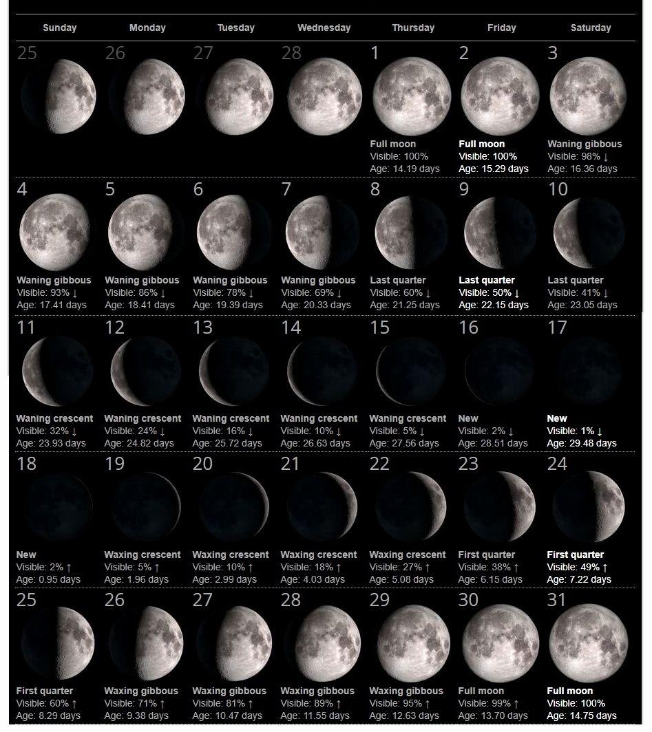 Free Download July 2019 Full Moon Calendar Free Printable