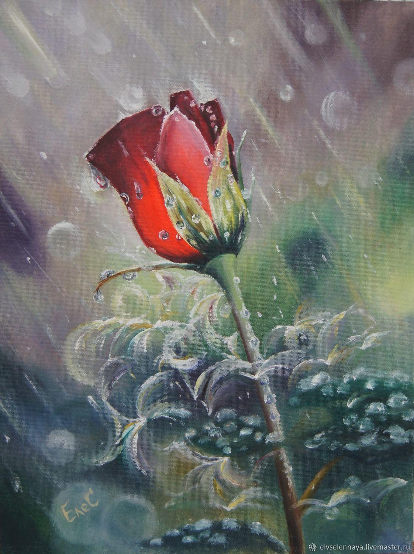 Картинка роза под дождем
