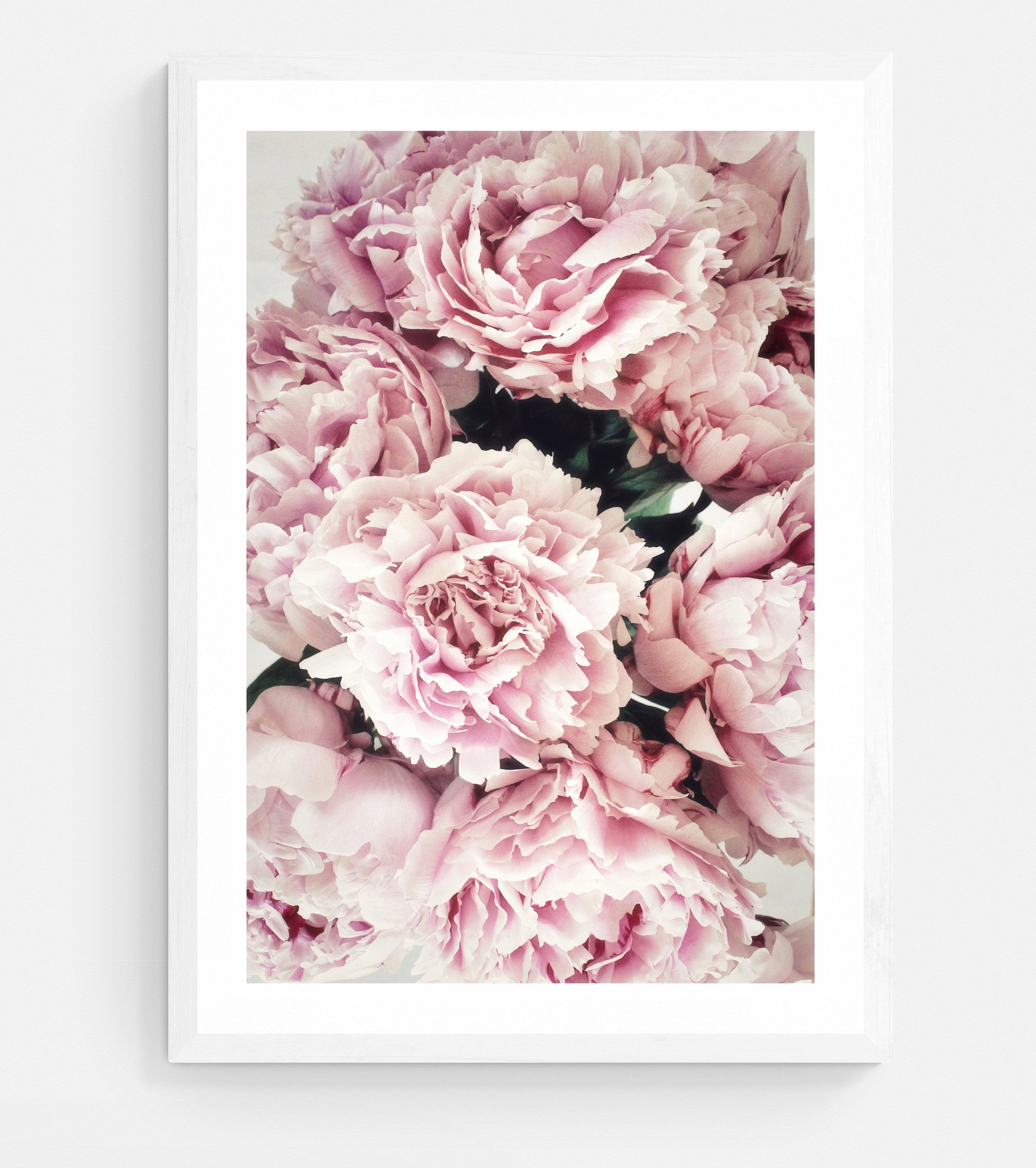 Peony Print Peonies Wall Art Pastel Pink Pink Peony Print Printed And Shipped Flower Photography Poster Print Scandinavian Print In 2020 Fine Arts Posters Pink Peonies Print Peony Print