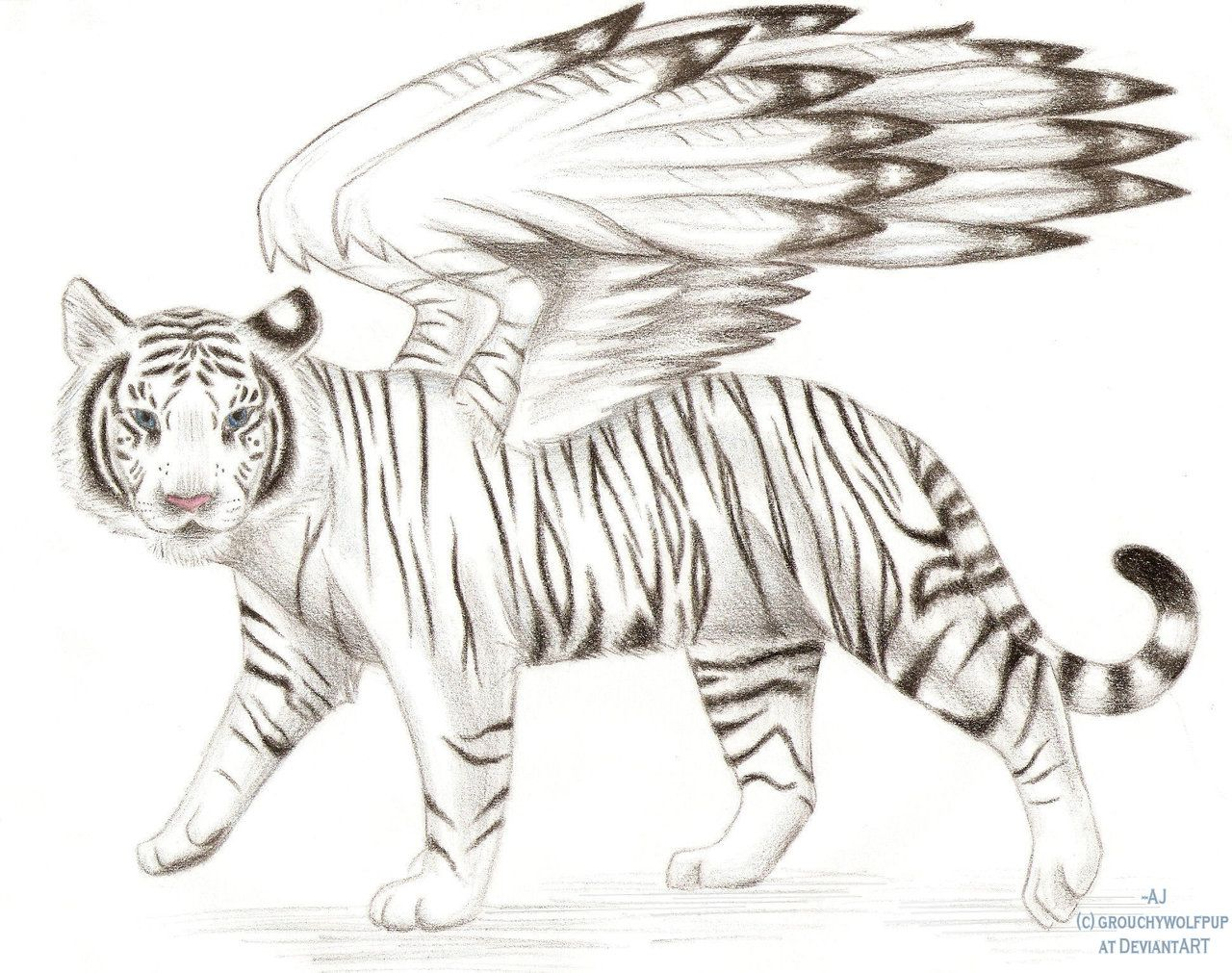 Winged white tiger breeds of my furries Pinterest Drawing