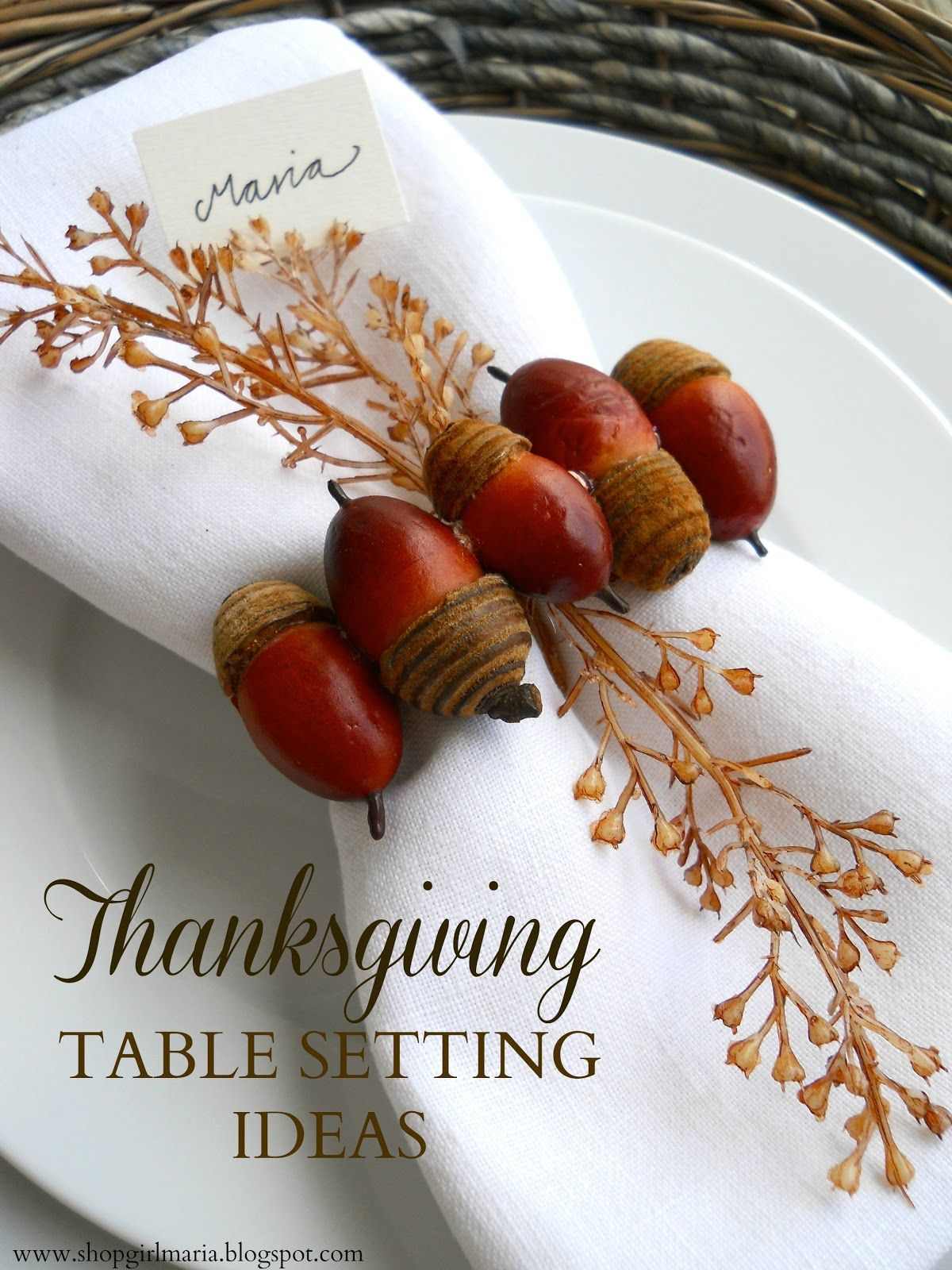 Shopgirl Thanksgiving Table Setting Ideas & Shopgirl: Thanksgiving Table Setting Ideas | A Homemade Living ...