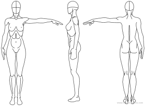 Female Anatomy Study of drawing lesson and tutorials with video arms ...