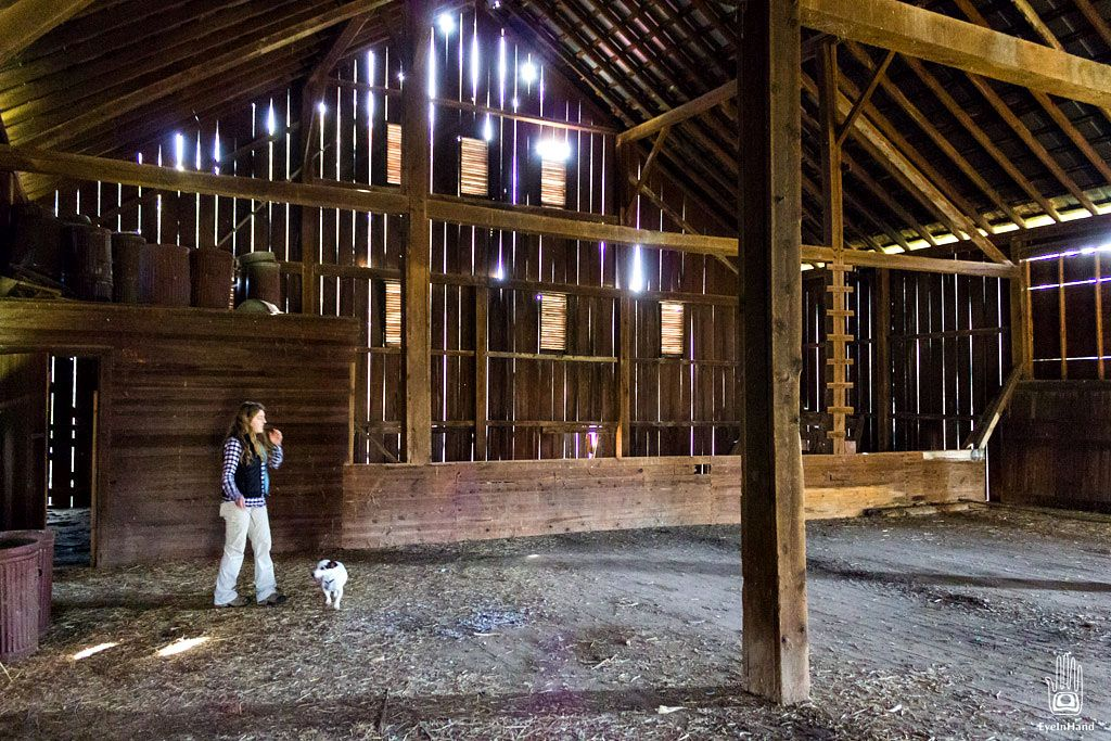 Old Dairy Barn Interior | Marginalia