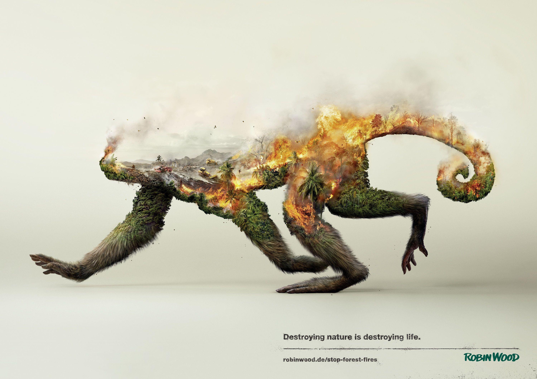 Disappearing Animals Animal Endangered Species Awareness