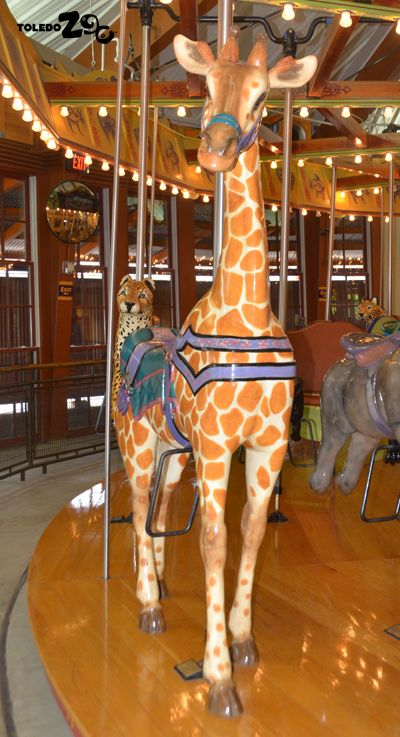 What's your favorite animal on the African Animal Carousel? Photo: Toledo Zoo/Kandace York. www.toledozoo.org