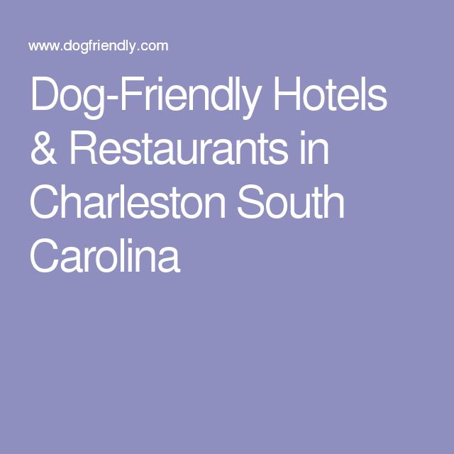 Dog Friendly Hotels Restaurants In Charleston South Carolina