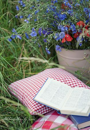 Oh how I dream of a quiet place outside to read...