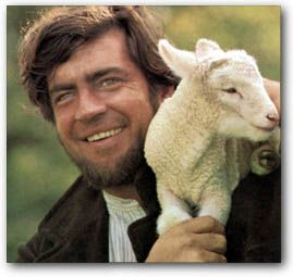 Image result for far from the madding crowd alan bates sheep