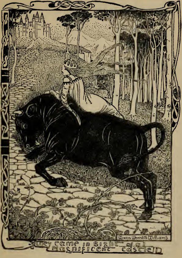 Afbeeldingsresultaat voor The Black Bull of Norroway