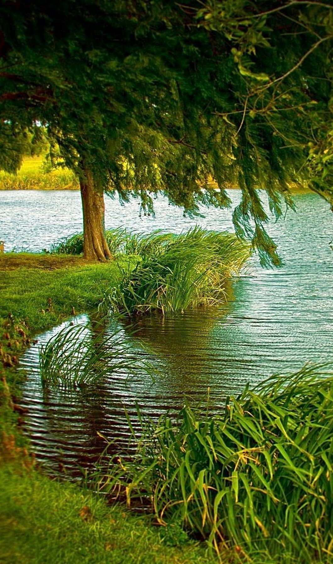 Gloria Garcia Beautiful Nature Nature Pictures Nature Photography
