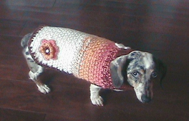 Crochet dog sweater patterns #dogcrochetedsweaters