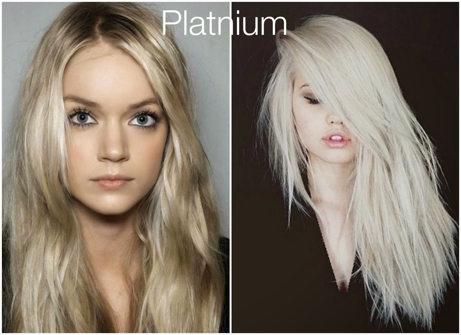 Fall Hair Colors Platnium Blond Looks From The Blog Pinterest