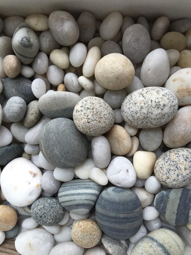 Maine Beach Stones 50 Mixed Rounded Rocks From Maine 1 2 Etsy In 2020 Beach Stones Maine Beaches Beach Rocks