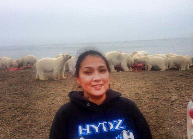 在檢視這具鯨魚屍體時,旁邊有一大群的北極熊正在虎視眈眈...