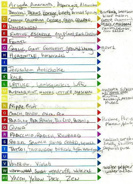 Alphabet Garden Plant List Plant List Garden Plants Gardening For Kids