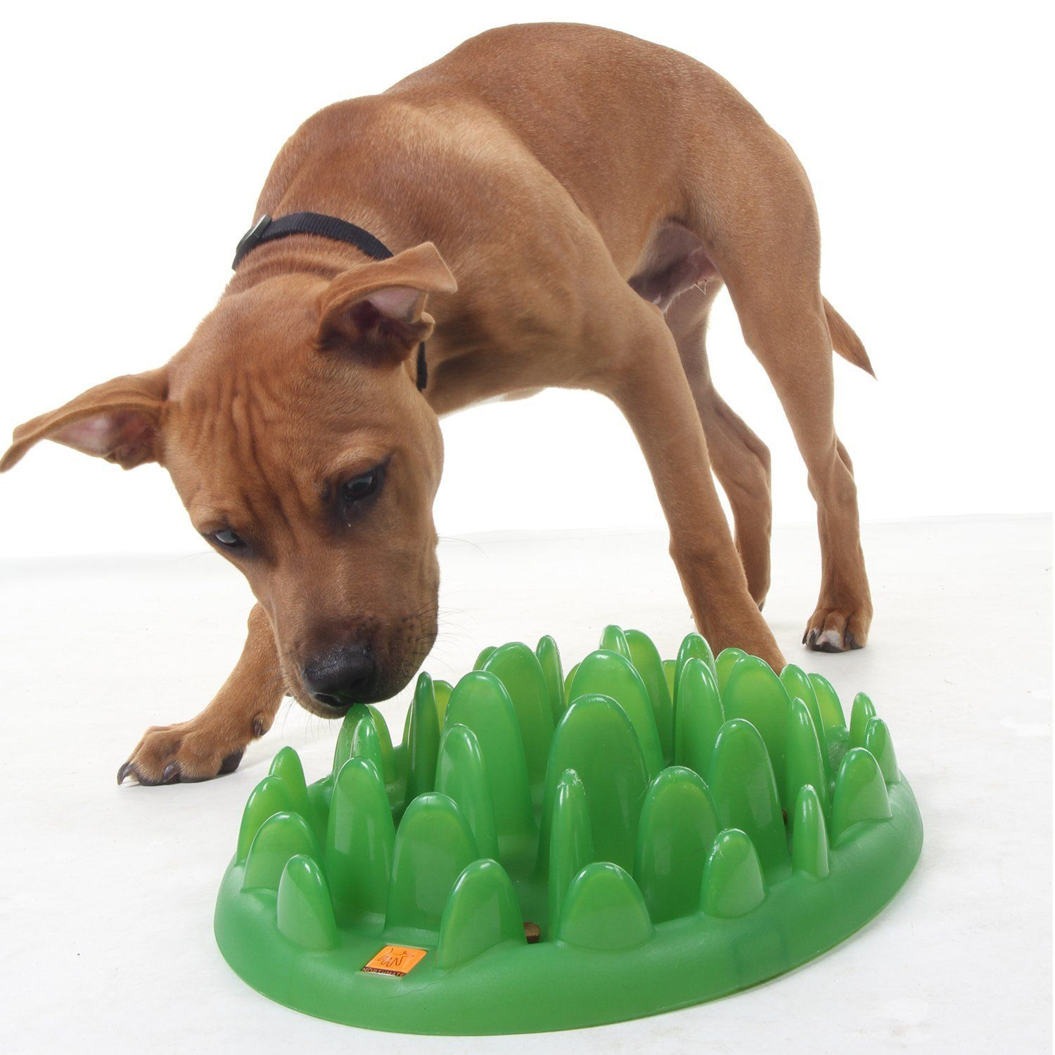 Pupper Pamper Interactive Dog Toy Treat Dispensing Dogs Https