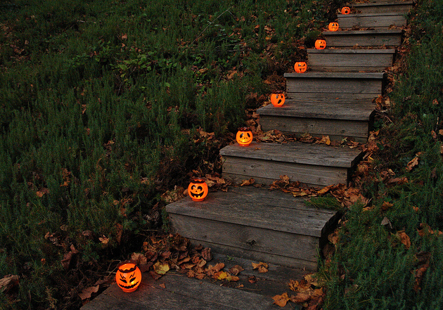 lil pumpkins Scary halloween decorations, Fall halloween