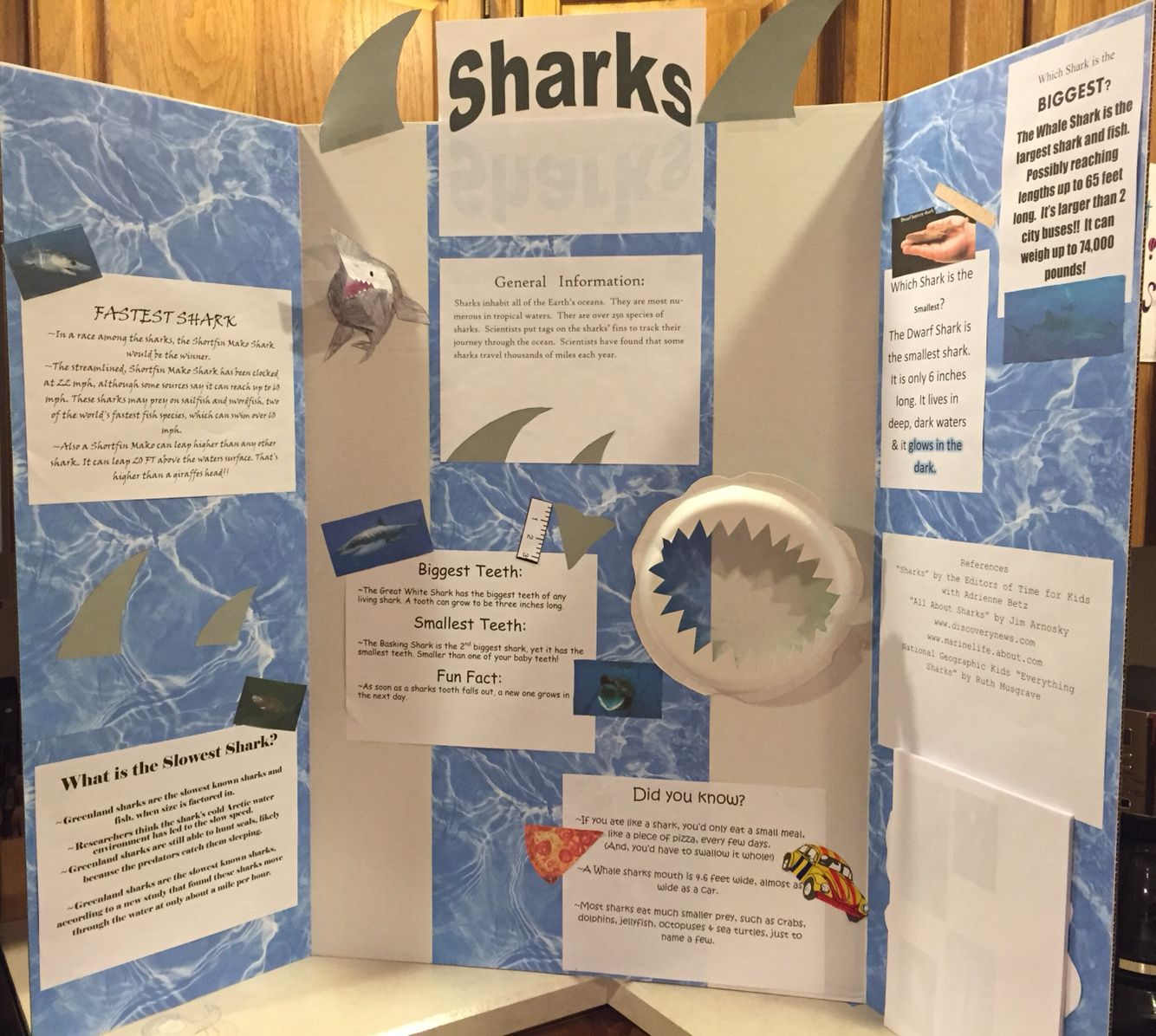 Here S A Shark Project For Kids I Got The Shark Teeth