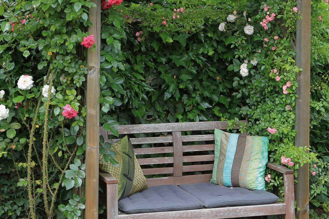 Garten Sommer Sonne Garden Sun Summer Foto Gartner Von Eden Kleine Garten Gestalten Kleiner Garten Kleine Krautergarten