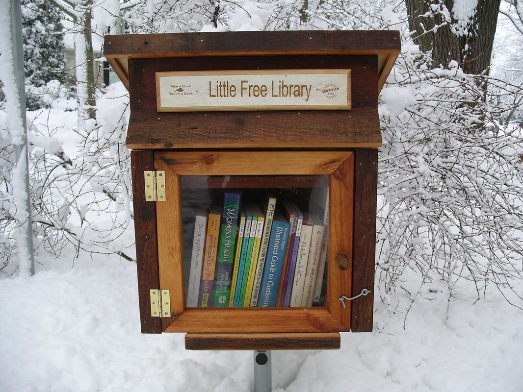 Little Free Libraries: Restore your faith in humanity, one book at a ...