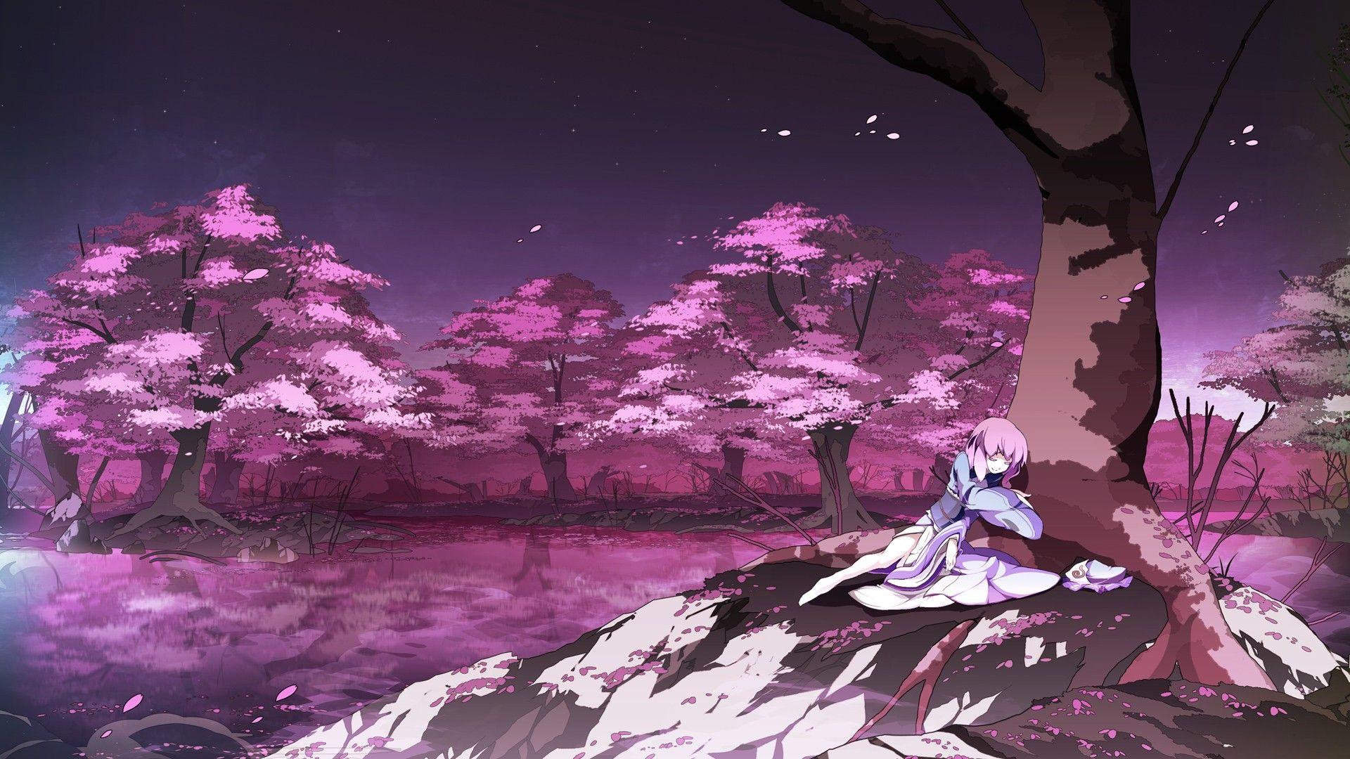 anime sakura Tìm với Google Anime cherry blossom