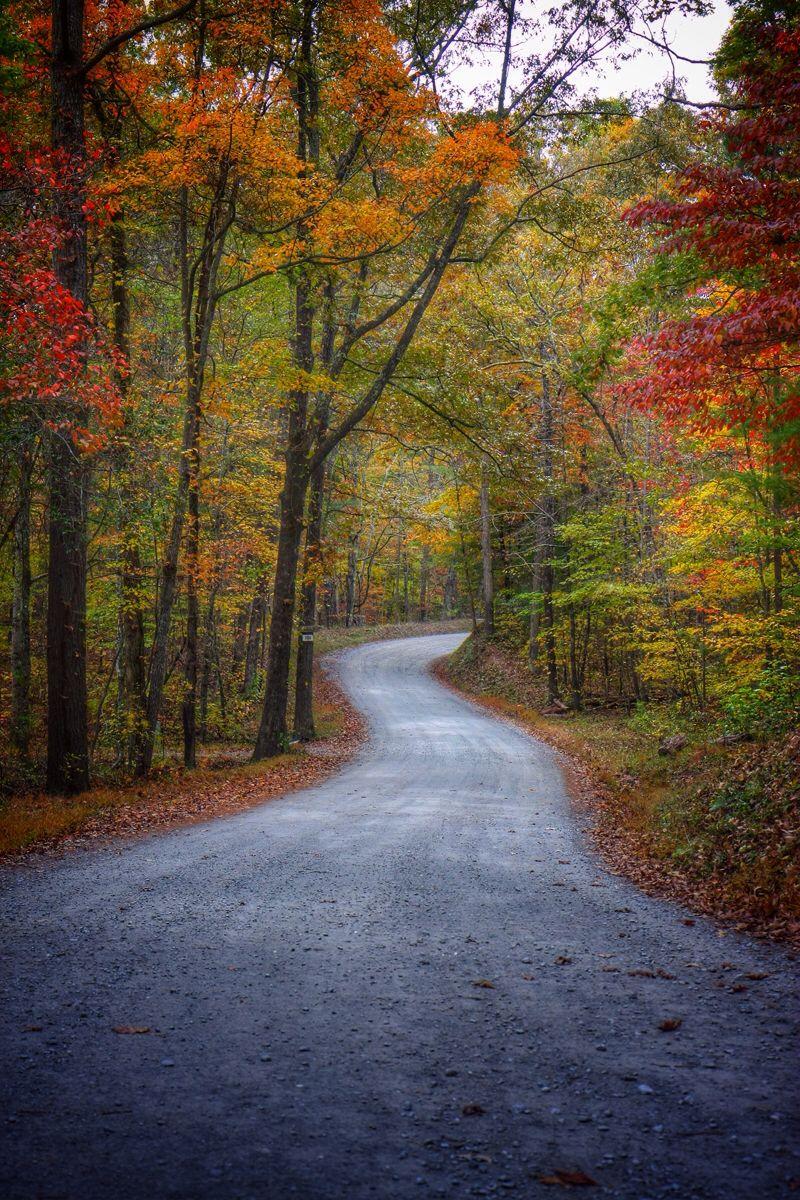 Blue Ridge, GA Blue ridge Blue ridge, Country roads