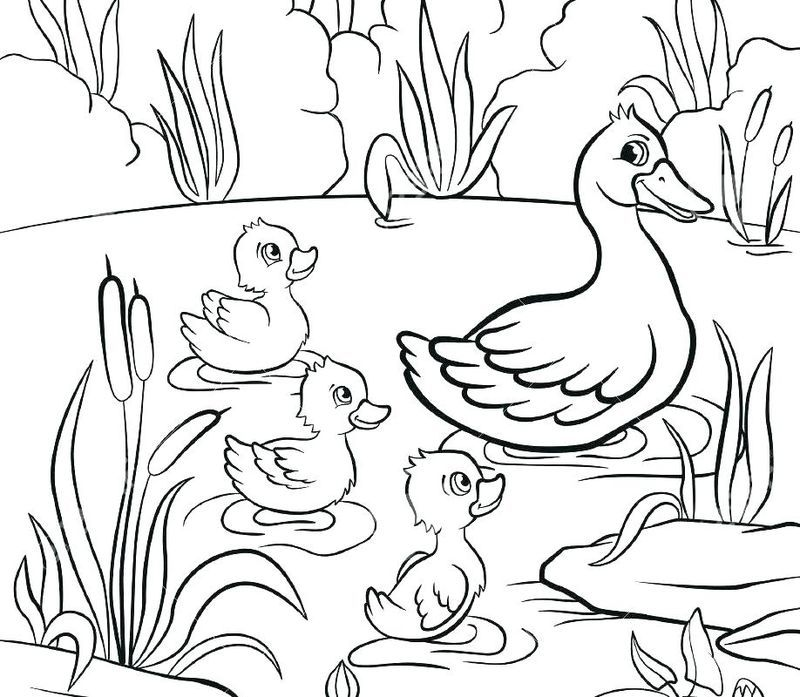 Classic Donald Duck Coloring Pages Animal Coloring Pages Cartoon Coloring Pages Christmas Coloring Pages