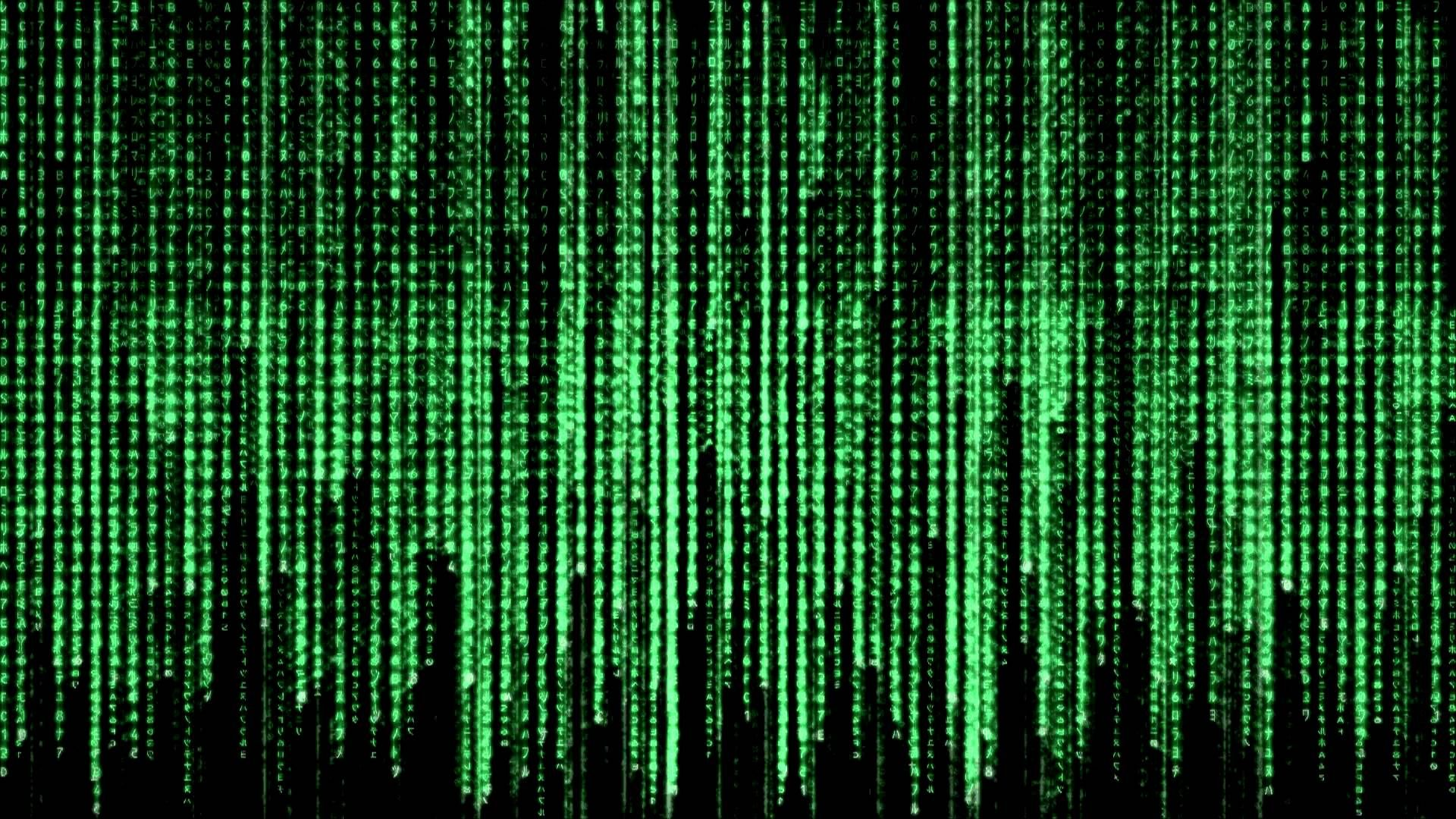 app the matrix code live wallpaper apk for windows phone android