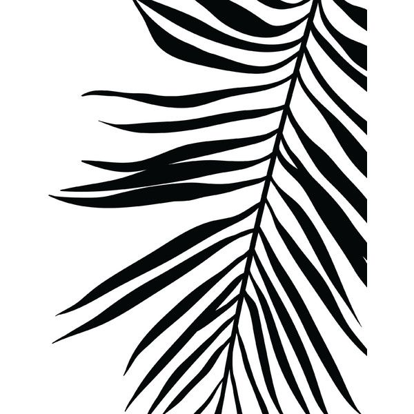 42+ Palm leaf clipart black and white information