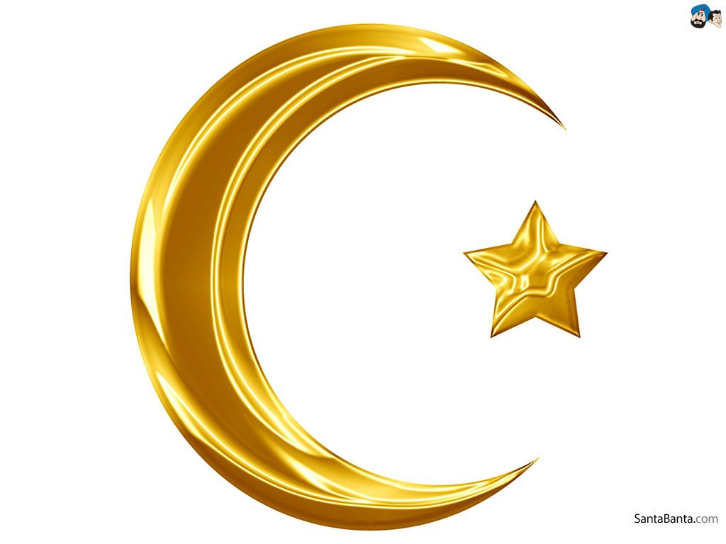 all american muslim logo - photo #10