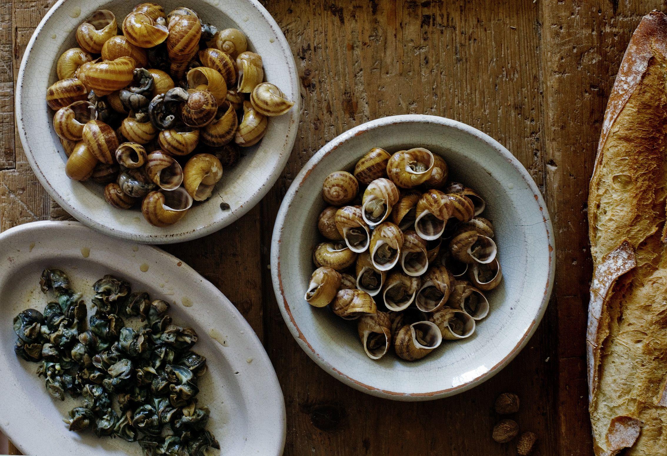 Grape snail: cooking recipe. Snail Food 73