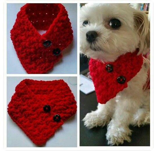 Cuellos/Bufandas para Perros a Crochet   Crochet   Pinterest ...