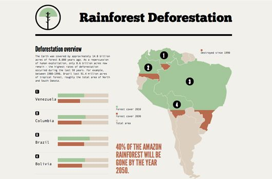Interactive The New Wave Of Infographics Rainforest