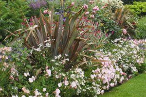 R ussir ses massifs et plates bandes jardinage plate - Creer un jardin mediterraneen ...