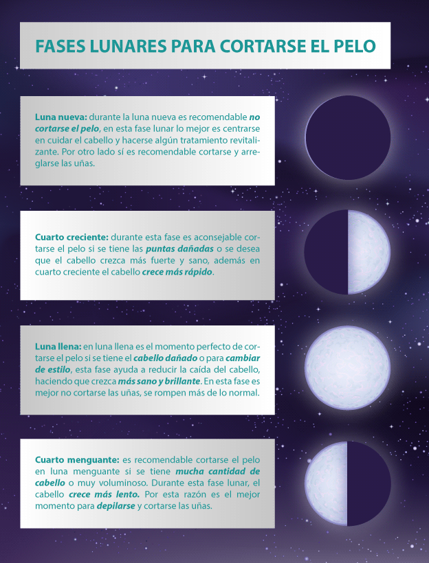 Echa Un Vistazo A Esta Infograf A Sobre Las Faseslunares