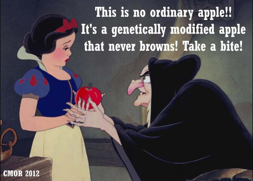 """Snow white ~ GMO apples ;o) say it ain't so.! Or how about GRAPE """"FLAVOURED"""" apples?!"""