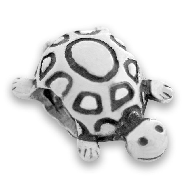 18c57e8ce Turtle to represent my GGG Grandmother, Mary Turtle, from Termonfeckon  Ireland