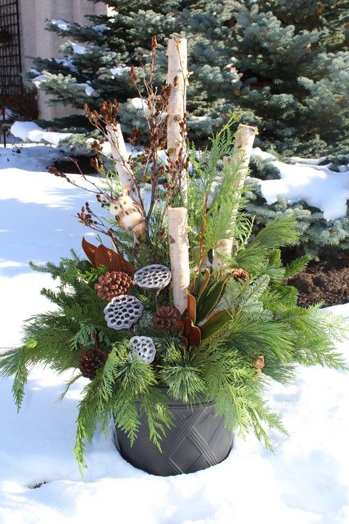 Decorating Urns For Christmas 10 Winter Containers  Christmas  Pinterest  Display Winter And