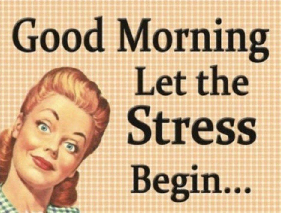 Good Morning Stress Meme Funny Good Morning Quotes Funny Good Morning Memes Good Morning Funny