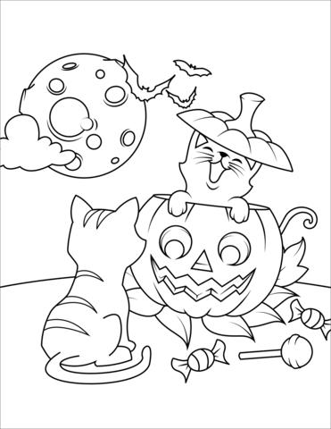 Gatti E Zucca Intagliata Per Halloween Disegno Da Colorare Libri Da Colorare Disegni Da Colorare Per Bambini Disegni Da Colorare