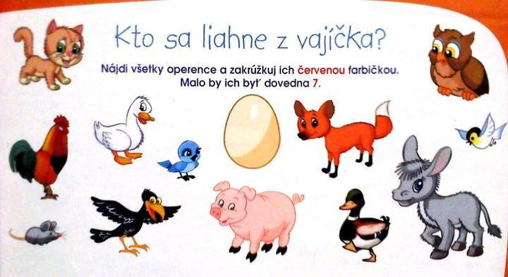 https://www.modrykonik.sk/blog/angelika4/album/ulohy-pre-skolkarov-a-predskolakov-9wuywq/28202670/